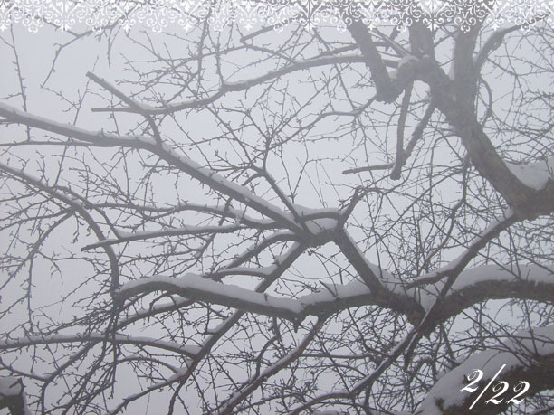 Mw_snowday